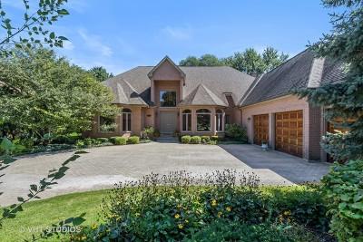 Arlington Single Family Home For Sale: 845 South Belmont Avenue