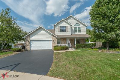 Lockport Single Family Home For Sale: 16736 Karen Springs Drive