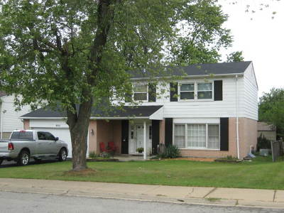Hickory Hills  Single Family Home For Sale: 9010 Meadowview Drive