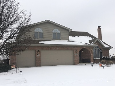 Mokena Single Family Home For Sale: 12181 Blackthorne Ridge Drive