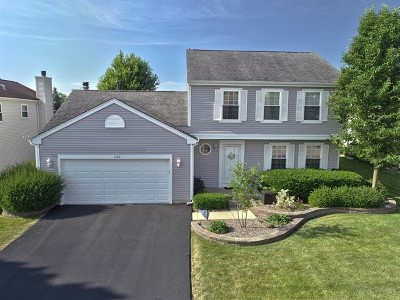 Lake Zurich Single Family Home For Sale: 1132 Stanton Road