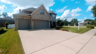Roselle Single Family Home For Sale: 790 Larson Lane