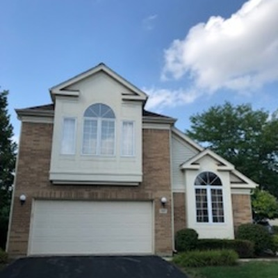 Buffalo Grove Single Family Home For Sale: 137 Manchester Court