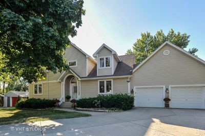 Lake Zurich Single Family Home For Sale: 27 Carolyn Court