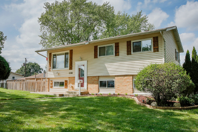 Glendale Heights Single Family Home For Sale: 1366 Terry Road