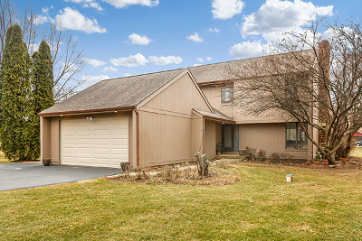 Johnsburg Single Family Home For Sale: 1423 Charnbrook Drive