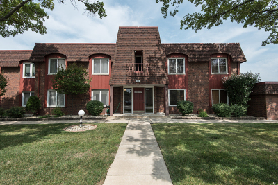 Hickory Hills  Condo/Townhouse Re-Activated: 8610 West 95th Street #1A4