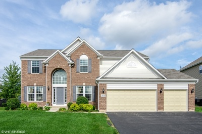 Carpentersville Single Family Home For Sale: 3502 Carlisle Lane