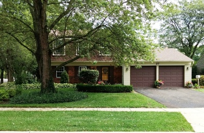 Schaumburg Single Family Home For Sale: 27 Portsmouth Court
