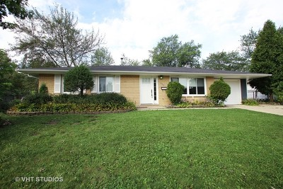 Schaumburg Single Family Home For Sale: 320 North Salem Drive