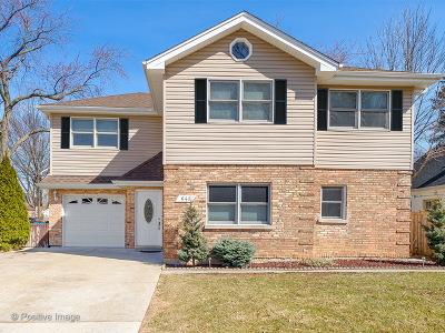 La Grange Single Family Home For Sale: 641 8th Avenue