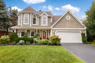 Wilmette Single Family Home For Sale: 1221 Frontage Road