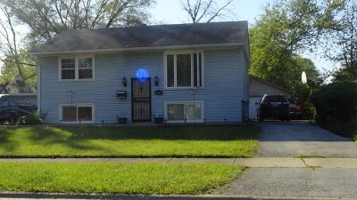 Glenwood  Single Family Home For Sale: 100 North Pine Lane