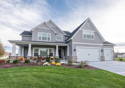 Plainfield Single Family Home For Sale: 25907 Augusta Court
