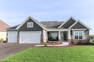 Plainfield Single Family Home For Sale: 26207 Baxter Court