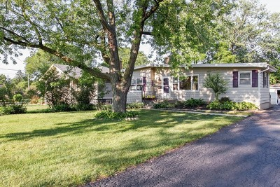 Lombard Single Family Home For Sale: 541 South Edson Avenue