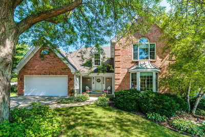 Glen Ellyn Single Family Home For Sale: 2s401 Carey Circle