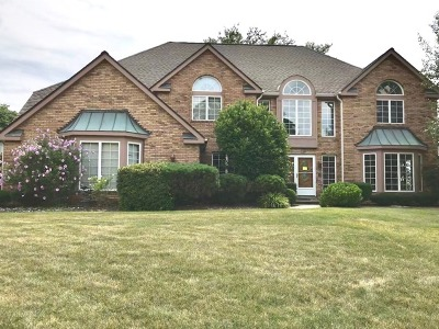 Orland Park Single Family Home For Sale: 10519 Wildflower Road