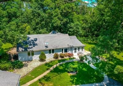Steger Single Family Home For Sale: 23320 Tieri Lane