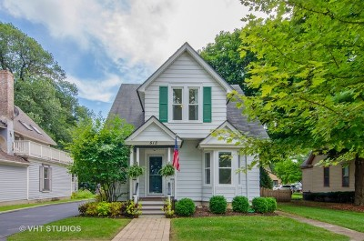 West Dundee Single Family Home For Sale: 513 Geneva Street