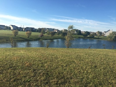 Shorewood Residential Lots & Land For Sale: 21262 South Redwood Lane