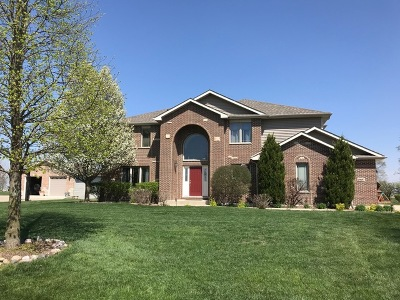 Shorewood Single Family Home For Sale: 19057 South Appaloosa Lane