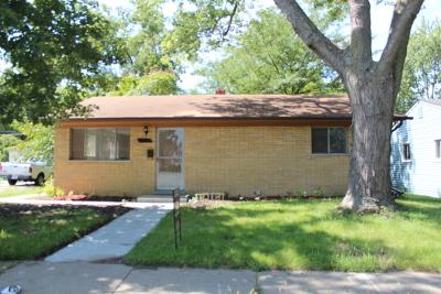 Steger Single Family Home For Sale: 3314 Halsted Street
