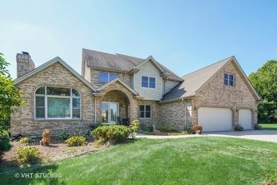 Homer Glen Single Family Home For Sale: 16048 South Peppermill Trail