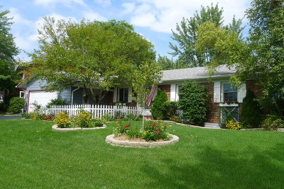 Hoffman Estates Single Family Home For Sale: 3935 Lexington Drive