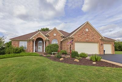 Johnsburg Single Family Home For Sale: 1014 Sarah Drive