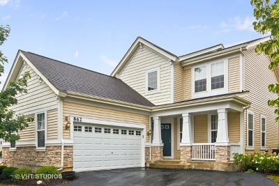 Lake Zurich Single Family Home For Sale: 862 Savoy Court