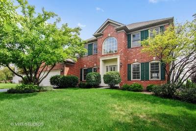 Aurora Single Family Home For Sale: 685 Kendridge Court