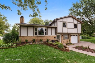 Hoffman Estates Single Family Home For Sale: 3575 Hillside Court