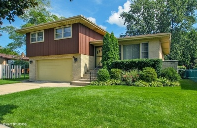 Niles Single Family Home For Sale: 8179 West Catino Terrace