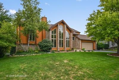 Batavia Single Family Home For Sale: 571 Young Avenue