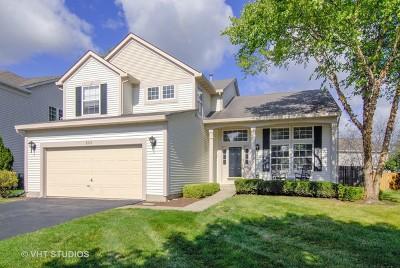 Naperville Single Family Home For Sale: 2115 Skylane Drive