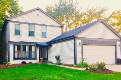 Buffalo Grove Single Family Home For Sale: 505 Ronnie Drive