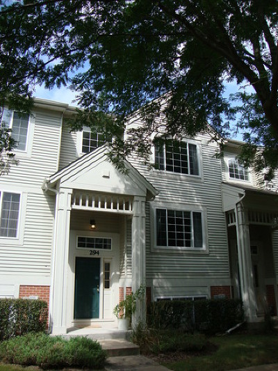 Cary Condo/Townhouse For Sale: 294 New Haven Drive
