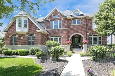 Bolingbrook Single Family Home For Sale: 1229 Bush Boulevard