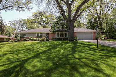 Palatine Single Family Home For Sale: 117 Briarwood Lane