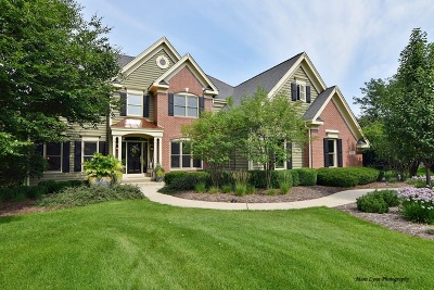 St. Charles Single Family Home For Sale: 7n282 Blue Stem Court