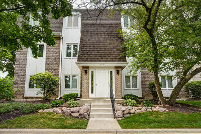 Libertyville Condo/Townhouse For Sale: 111 East Winchester Road #C