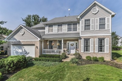 Carol Stream Single Family Home For Sale: 1110 Idaho Street