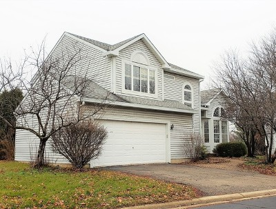 Naperville Rental For Rent: 1307 Little Berry Court