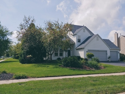 Crystal Lake Single Family Home For Sale: 1597 Autumncrest Drive