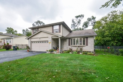 Markham Single Family Home For Sale: 15829 South Homan Avenue