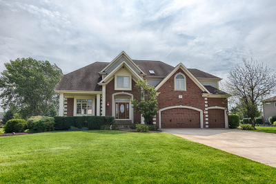 Plainfield Single Family Home For Sale: 25901 South Courtney Road