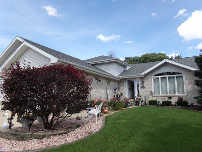 Lockport Single Family Home For Sale: 1342 East Collingwood Drive