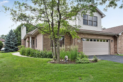 Palos Heights, Palos Hills Condo/Townhouse For Sale: 6189 Princeton Lane