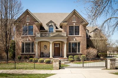 Elmhurst Single Family Home For Sale: 506 South Fairfield Avenue